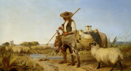 Andalusian Shepherd